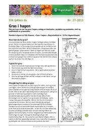 Gras i hagen - Hageselskapet