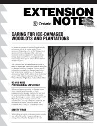 caring for ice-damaged woodlots and plantations - LandOwner ...