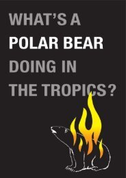What's a Polar Bear Doing in the Tropics? - Animal Concerns ...