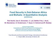 Food security in Sub-Saharan Africa and biofuels - Global ...