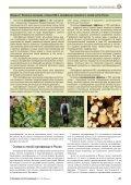 Лесная сертификация и экономика землепользования - Page 3