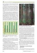Лесная сертификация и экономика землепользования - Page 6