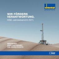 HSE Jahresbericht 2011