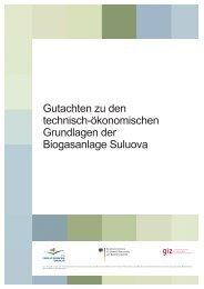 Gutachten zu den technisch-ökonomischen Grundlagen der ...
