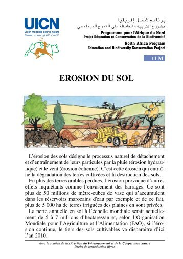11 - Erosion