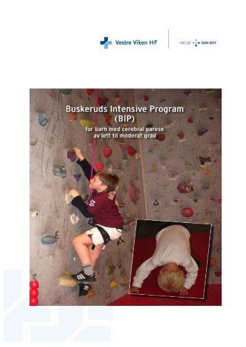 Buskeruds Intensive program (BIP) - Vestre Viken HF