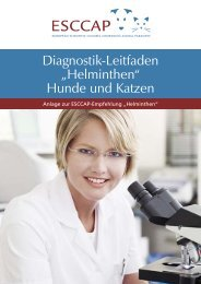 Diagnostik-Leitfaden Helminthen - Esccap