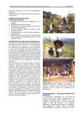 INVESTIGACIONES ORIGINALES - Revista Peruana - Page 3