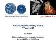 Anatomie Funktion Kalzifikationen - UniversitätsKlinikum Heidelberg