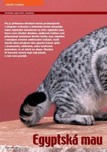 Turecká kočka van - Nakladatelství MINERVA CZ