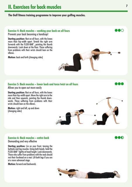 flexi bar exercises download