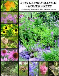 RGM 2-up_4_2 sidedPirinting.p65 - Central Ohio Rain Garden ...