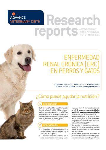 Renal Canine & Feline > PDF - Affinity-Petcare
