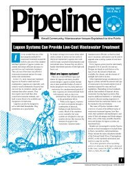 Lagoon Systems Can Provide Low-Cost Wastewater Treatment