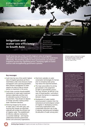 Irrigation and water use efficiency in South Asia - Global ...