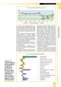 sommario - Camera di Commercio di Parma - Page 3