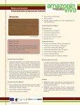 Forestal Fichas Comerciales de Especies Poco Conocidas de ... - Page 2