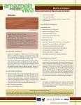 Forestal Fichas Comerciales de Especies Poco Conocidas de ... - Page 5