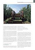 estructura de producción de la fruta dulce en ... - Cortes de Aragón - Page 2