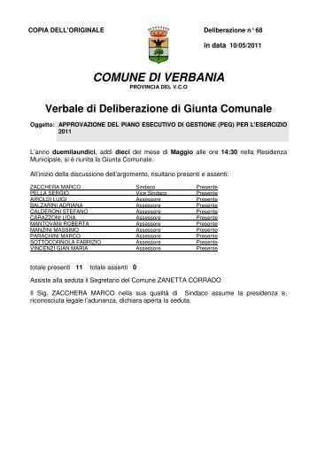 approvazione del piano esecutivo di gestione (peg) - Comune di ...