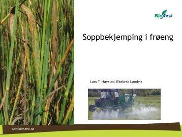 sopp- og skadedyr_frø_i_sør.pdf - Norsk Landbruksrådgiving Agder