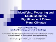 Identifying, Measuring and Establishing the Significance of Prison ...