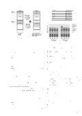 キャッシュウェイ割り当てとコード配置の同時最適化 ... - System LSI Lab. - Page 5