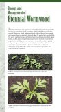 Biology and Management of Biennial Wormwood - Page 2