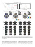 Comparison of diffusion-weighted fMRI and BOLD fMRI responses ... - Page 6