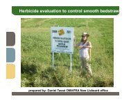 Herbicide evaluation to control smooth bedstraw - Ontario Soil and ...