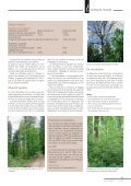 Article original - Waldwissen.net - Page 2
