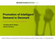 Promotion of Intelligent Demand in Denmark - Tekes