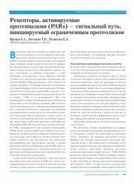 Рецепторы, активируемые протеиназами (PARs) – сигнальный ...