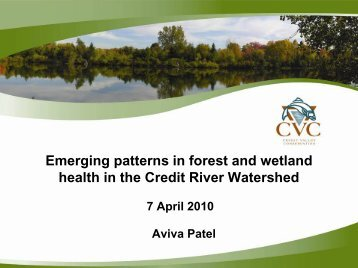 Emerging Patterns in Forest and Wetland Health - A Patel.pdf