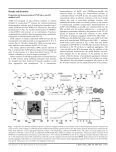 Cell up-take control of gold nanoparticles functionalized with a ... - Page 4