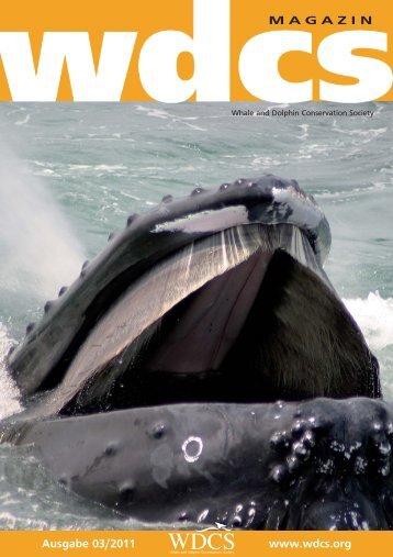 Ausgabe 03/2011 www.wdcs.org MAGAZIN - WDCS Deutschland