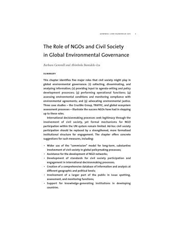 The Role of NGOs and Civil Society in Global ... - Yale University