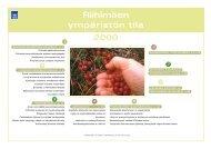 Riihimäen ympäristön tila 2000 - Riihimäki