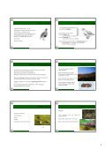 Vortrag Spezielle Ornithologie 2012_pdf_Teil 2 - Vorarlberger ... - Page 3