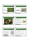 Vortrag Spezielle Ornithologie 2012_pdf_Teil 2 - Vorarlberger ... - Page 4