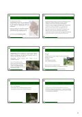 Vortrag Spezielle Ornithologie 2012_pdf_Teil 2 - Vorarlberger ... - Page 6