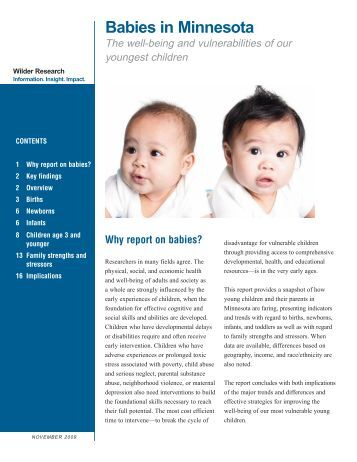 Babies in Minnesota - The Well-Being and Vulnerabilities of Our ...