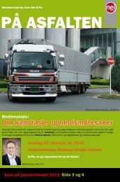 PÃ¥ asfalten 02-2013 - Nei til EU