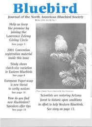 Bluebird - North American Bluebird Society