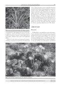 Vegetación y Fitogeografía - Aves Argentinas - Page 7