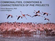 commonalities, conditions & characteristics of phe projects