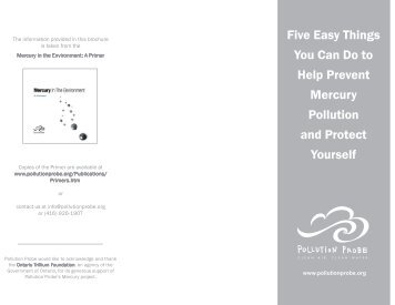 Five Easy Things You Can Do to Prevent Mercury ... - Pollution Probe