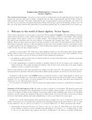 1 Welcome to the world of linear algebra: Vector Spaces