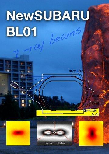 γ-ray beams - 兵庫県立大学 高度産業科学技術研究所
