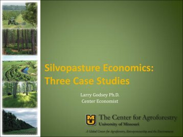 Silvopasture Economics: Three Case Studies